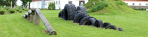 Dog parkour fysioterapi mentale og fysiske udfordringer for hunde opbygge muskler sund motion