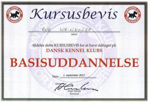 DKK Basisuddannelse