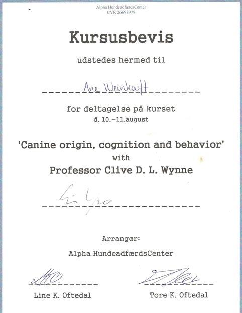 Clive Wynne - Animal Cognition - Origin of the dog