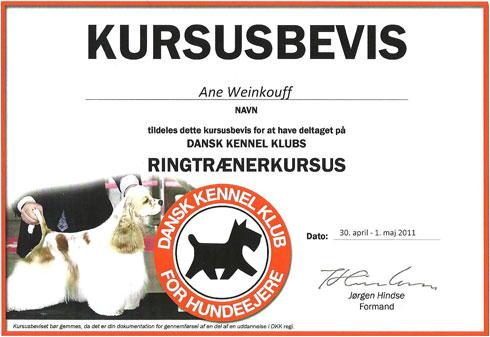 DKK Ringtrænerkursus